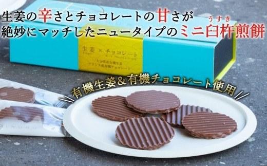 ふるさと納税 百寿ひとひら(有機生姜×有機チョコレート)計24枚