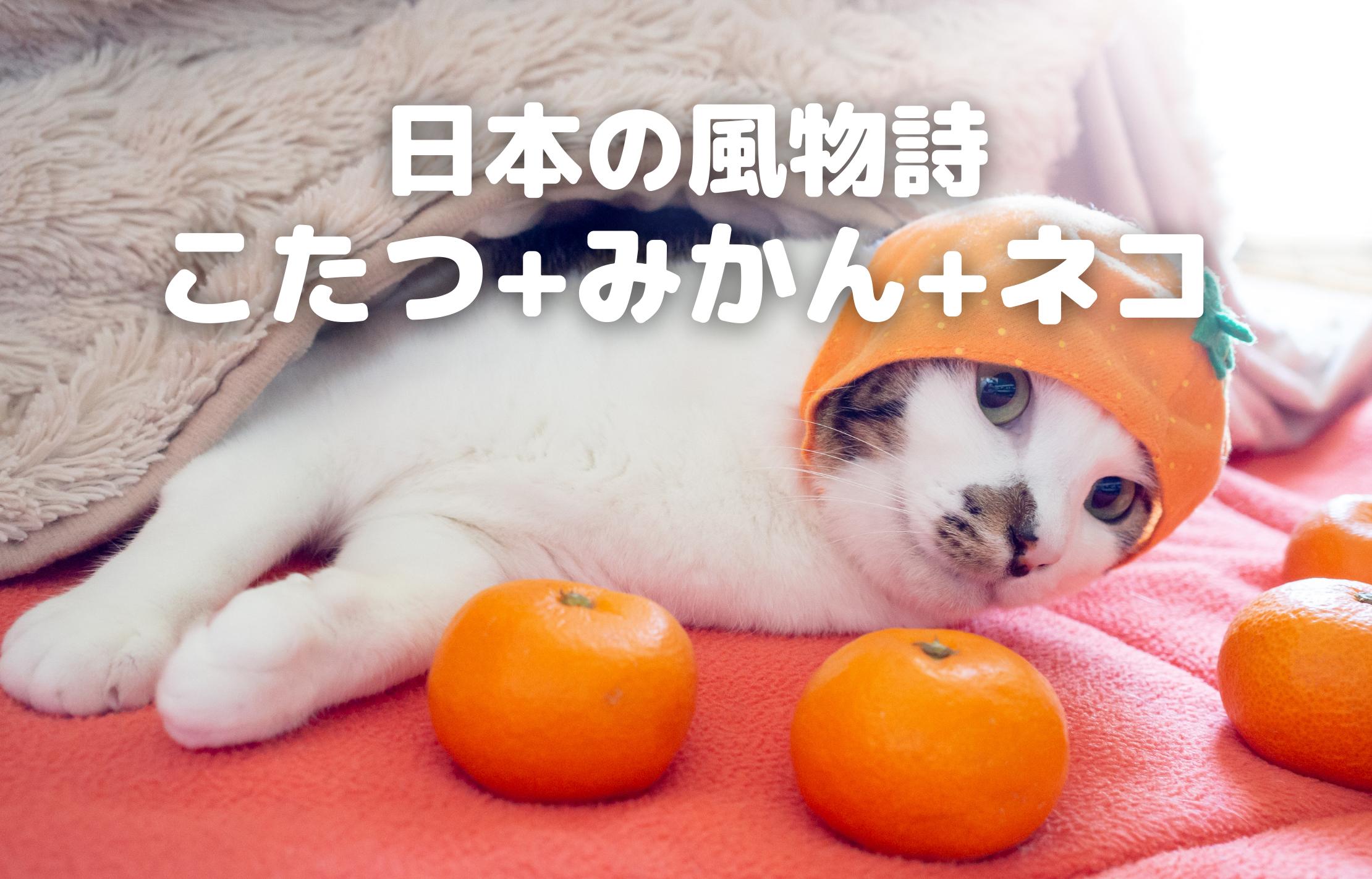 日本の風物詩 こたつ+みかん+ネコ
