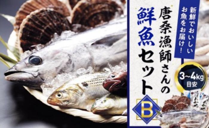 唐桑漁師さんの鮮魚セットB
