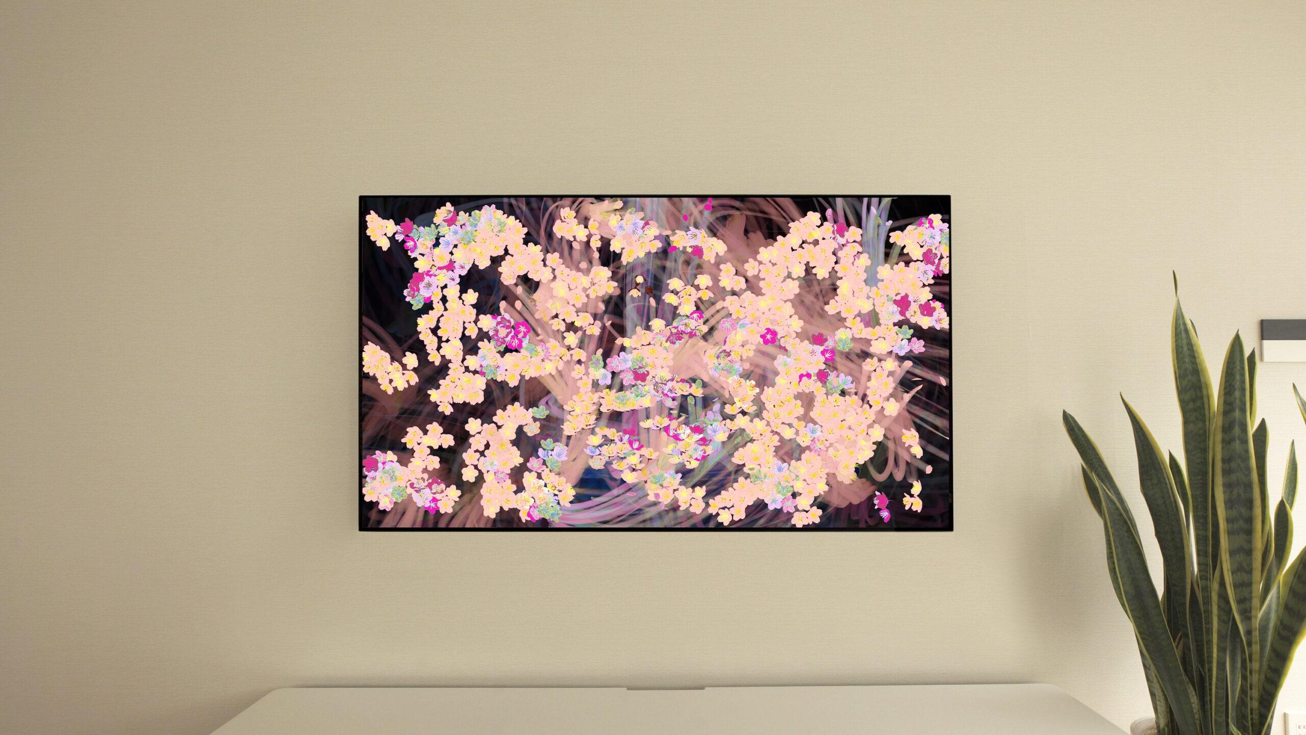 サクラ ボミング ホーム  桜が咲く