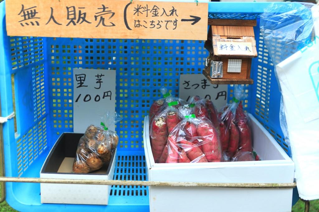 旬の野菜や果物を販売する無人販売所