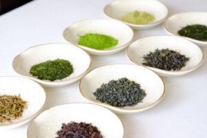 日本茶セレクトショップ「CHABAKKA TEA PARKS」