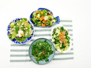 4種のこだわりトスサラダ