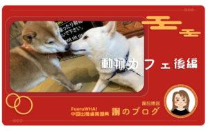 謝のブログ動物カフェ後編