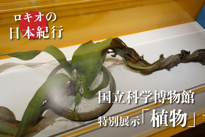 国立科学博物館で開催中の特別展示「植物」